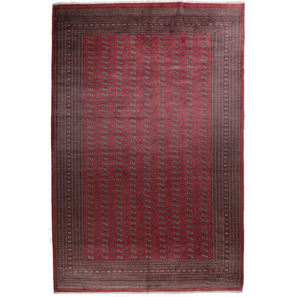Nagyméretű szőnyeg Mauri 377 X 545  gyapjú szőnyeg