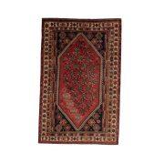 Shiraz 159 X 248