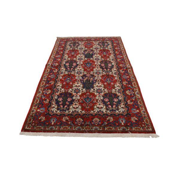 Bakhtiar 151x253